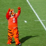 BDN Know the Opponent: Clemson Tigers