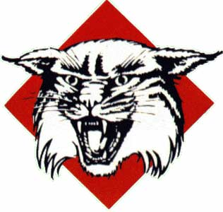 Davidson_Wildcats_logo